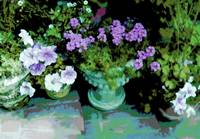 Flower pots on steps lavender flowers