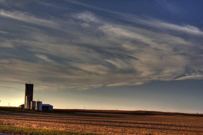 Farmland (IMG_6250)