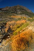 Eastern Sierras in Fall 2008 -Tioga Pass