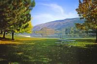 Okanagan Fall 1 by Priscilla Turner