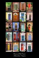 Doors of Old Town - Charity Project