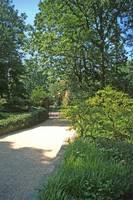Dumbarton Oaks, Washington, DC 23 by Priscilla Turner