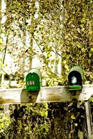 Drunken Mail Boxes