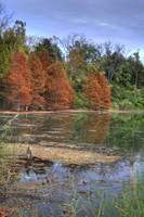 Deep Pond (IMG_6307) by Jeff VanDyke