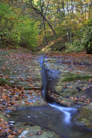 Fall Creek Gorge - Tributary Stream (IMG_6323)