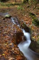 Fall Creek Gorge - Carved Rock #1 (IMG_6358+) by Jeff VanDyke