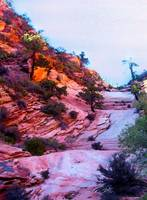 Zion's splender of color
