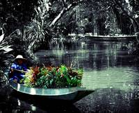 boatman lomo