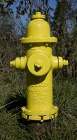 Yellow Fire Hydrant CR IMG_0066