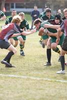 Wolfhounds D3 vs MIT 75