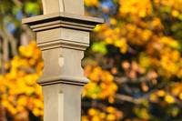 Architectural Detail & Autumn Bokeh