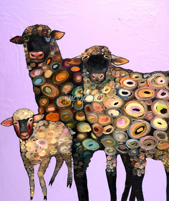 Woolly Sheep in Lavender