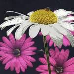 White Daisy and Bee  by Deanne Flouton