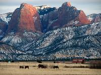 Kolob fingers in winter
