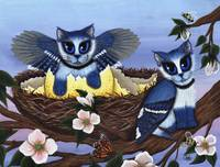 Blue Jay Kittens , Bird Cats