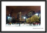 Central Park's Ice Skating Ring