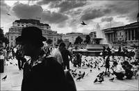Trafalgar Square, Late Afternoon, London