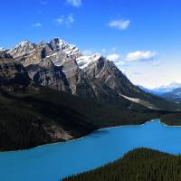 Peyto Lake Panorama Art Prints & Posters by Kyle Lane