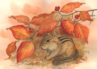 Autumn Chipmunk by Sharon Himes