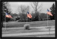 american flags of honor