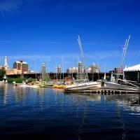 Sail Boston Art Prints & Posters by Chris Bressoud