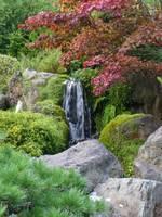 Autumn Waterfall by Carol Groenen