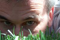 Face in the grass