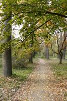 Path in Skopje park