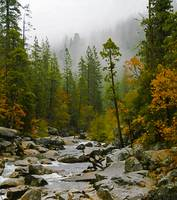 Mist Over the Stanislaus III