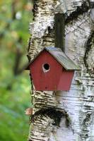 Little Red Bird House