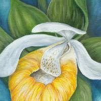 """""""Yellow Orchid"""" by amwolf"""