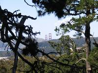 View from Strawberry Hill, Golden Gate Park
