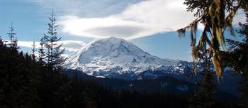 Mt. Rainer from Bear Head Mt.