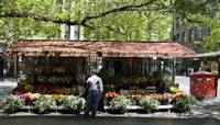 The Flower Stall, Swanston Street