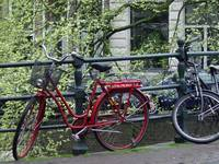 Red Bike in Spring