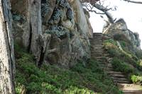 Point Lobos Stairs