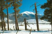 Sunset Crater Ranch with Snow