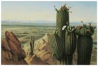 Henry Cheever Pratt's View from Maricopa Mountain
