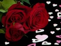 Red Roses with Valentine's Day Hearts