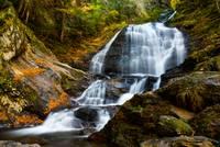 Autumn Falls by Marcus Panek