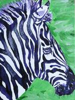 FREEDOM THE ZEBRA