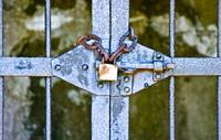 Secure by Wendy Ritch