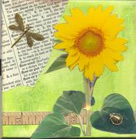 Sunflower and Dragonfly Collage