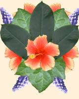 Flower Mandala 2 - Flower Shield