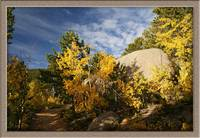 Fall Colors of Pike's Peak