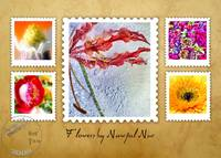 FLOWERS by NAWFAL NUR, Set TWO, Edit F