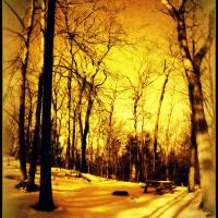 Golden Winter Campsite by J.Everhart framed Art Prints & Posters by julev69