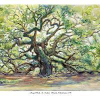 """Angel Oak, St Johns Island, Charleston SC"" by debereves"