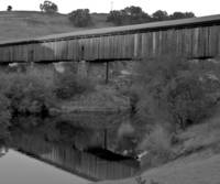 Wooden Covered Bridge At Knights Ferry