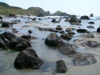 Tidepools as far as the eye could see, Oregon Coas
